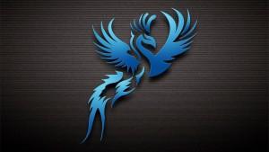 dark-blue-bird-1920x1080-wallpaper-12602